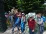 Zerówka w DinoParku